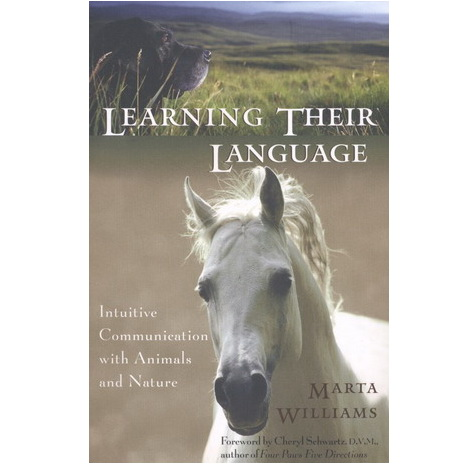 Learning their language - Marta Williams