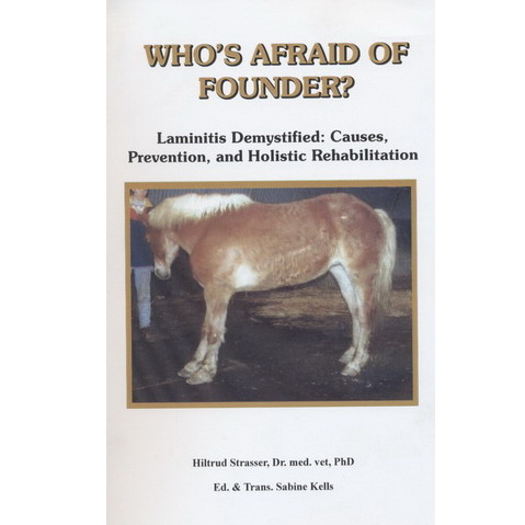 Who's afraid of founder - Hiltrud strasser